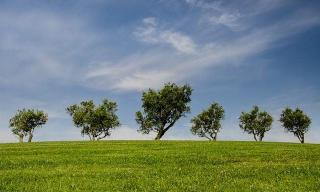 'Van de overwaarde op ons huis kochten we een woonboerderij op het platteland'